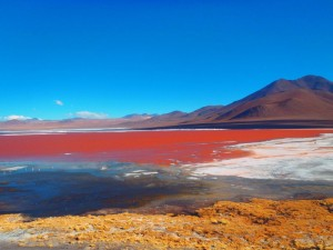 Laguna Colorada Sud Lipez Bolivie