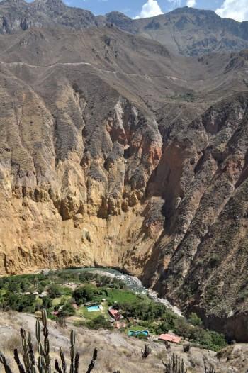 Oasis - Canyon de Colca