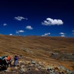 Altiplano bolivien, voyage en Bolivie