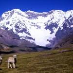 Andes Pérou, séjour Pérou