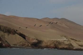 Paysage de Paracas, Pérou