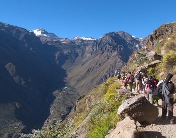 Trek Pérou - Canyon de Colca