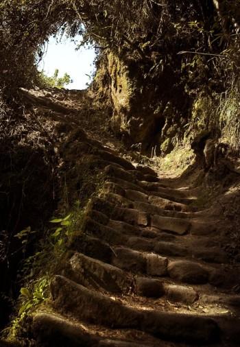 trek de l´inca - Machu Picchu