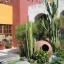 Jardin - Sol De Mayo - Arequipa