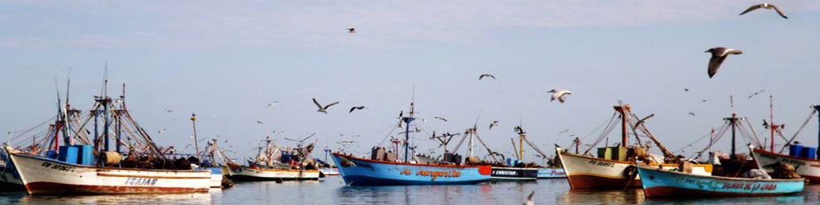 voyage pérou - Port de Paracas