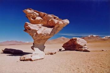 Arbre de Pierre Sud Lipez, Bolivie