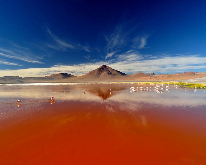 Laguna Colorada Sud LipezLaguna Colorada Sud Lipez