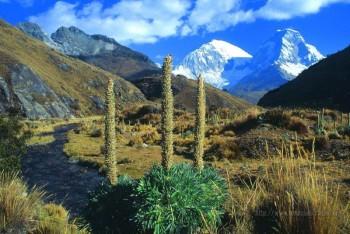 Parc de Huascaran - Nord Pérou